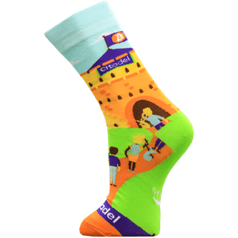 Image of Bitcoin Citadel sock